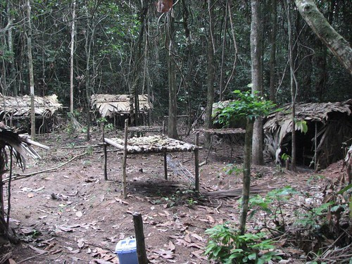 A very large hunting camp in the Tshuapa -Lomami forest, where i thought here would be none