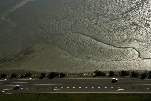 Estuary Traffic
