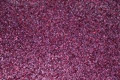 Cabernet Sauvignon fermentation