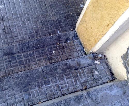 foto Denuncia Uno de Melilla