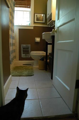 Our spa-like bathroom