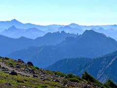 View from the burroughs on Sunrise side of Mt Rainier