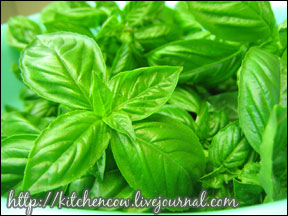 How to Make Basil Pesto 01