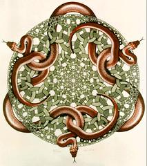 Escher - Snakes 1969