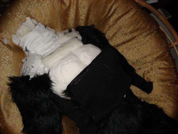 foam chest