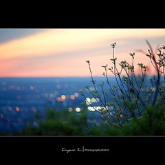 (Ziyan | Photography) Tags: blue sunset sky canada night canon purple bokeh montreal 5d dust  70200mm         bokehhearts