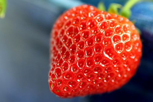 Ft Laramie strawberry