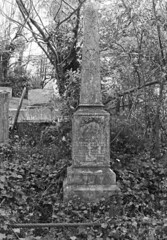 The Gillon family grave