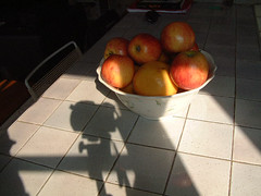 Ombre finnoise (completement debridee) pres d'un menu pomme (wellwhynotafterall) Tags: ombre pomme menupomme