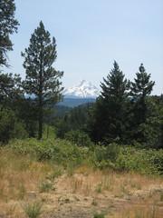 Mount Hood-OR (k_bo1) Tags: oregon pacificnorthwest mounthood