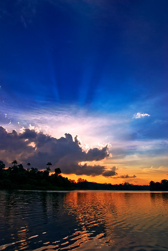 MacRitchie sunset