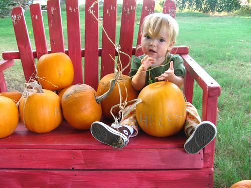 Bug's Pumpkin
