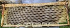 Beekeeping 2511
