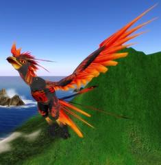22.10.10_001 (Unna Nubalo {Blogger & Photographer}) Tags: phoenix sl secondlife ave pajaros fenix mta naranja nubeszarkaras mejoratuapariencia