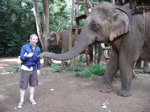 Elephant_Fun_02