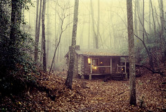 Old Home Place 1985 (anoldent) Tags: log cabin woodland misty dictionary northcarolina hendersoncounty tuxedo lpdwellings saudade