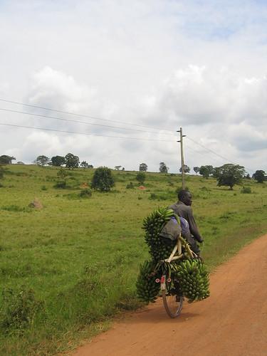 Uganda - Roadside  Banana Man