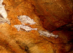 Aboriginal pictographs