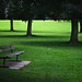 #203 Old Deer Park - by ☻mrhappy☻