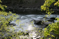 The River after the Falls (Lacey.Anne) Tags: wa snoqualmiefalls