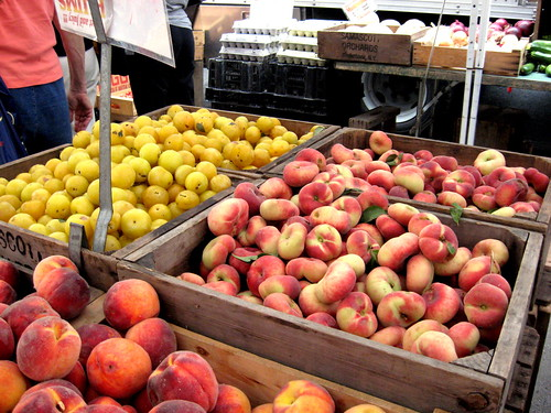 Samascott Orchards peaches and plums at the Morningside Heights Greenmarket