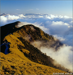 a58_04,06012306------ (sunshine) Tags: taiwan                      120hasselblad sunshine