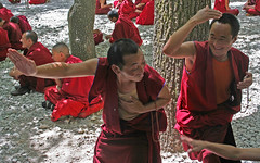 Training (Ingiro) Tags: training buddha monk buddhism tibet tibetan lhasa ingiro interestingness443 i500