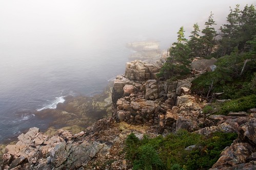 Otter Cliffs in the Fog