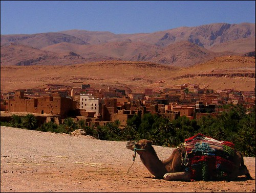 Fotografía: Mossaiq