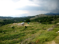 En redescendant de l'observatoire par la piste: bergerie de Croce