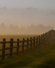 obscured (nosha) Tags: new trees usa mist green fall nature beautiful beauty grass misty fog sunrise fence landscape dawn newjersey nikon october nj mercer creativecommons jersey 2009 mercercounty pennington 2010 lightroom penningtonnj nosha nikond40 nikoncorporation 28300mmf3556 fall2010 1250secatf80
