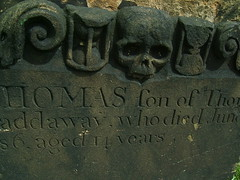 Thomas VIII