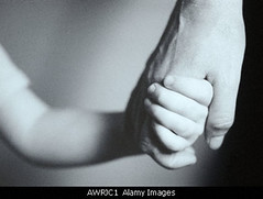 Man and child holding hands close up (five2b4u) Tags: family baby love parenthood up kids ties children togetherness kid holding hands child hand close shot adult affection guidance families attachment laugh getting adults along complicity tenderness bonding parenting guiding protecting fondness indoo