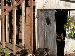 The Shed (Leonard John Matthews) Tags: door old backyard shed australia used repair worn queensland end scarborough mythoto