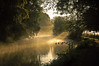 (buteijn) Tags: morning sun mist holland misty fog wow haze nevel bravo perfect utrecht photographer foggy nederland ducks amelisweerd rhijnauwen krommerijn eenden the bunnik sfeer buteijn abigfave superaplus aplusphoto