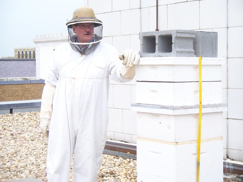 Wayne Bogovich, The Peoples Garden Apiary Beekeeper