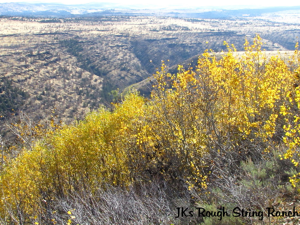Lookin' into McCoy Creek Canyon
