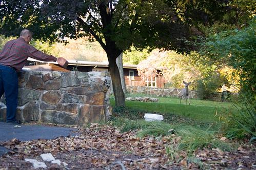 2010-10-17 18-10-21_0115