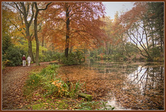 In Maharishi's Garden (Bert Kaufmann) Tags: autumn holland color fall netherlands colors garden colours herbst herfst nederland blad autumncolours autumncolors meditation nl tuin garten hdr olanda herfstkleuren limburg farben niederlande vlodrop grens kleuren maharishi vedic enlightment bladeren meditatie herbstfarben herfstblad herfstbladeren grensgebied vlodropstation sanktludwig vedisch voormaligklooster maharishisgarden