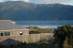 DSC_2969 (mansapura) Tags: newzealand beach kapiti waikanaebeach anawesomeshot afmicronikkor105mm