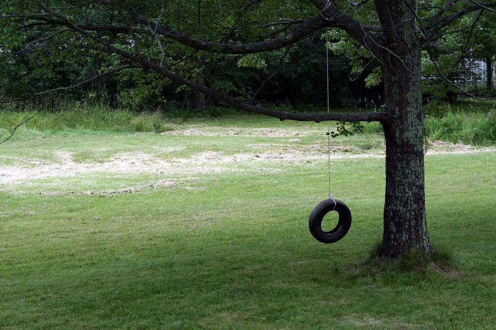 July 5, 2007: Tire Swing