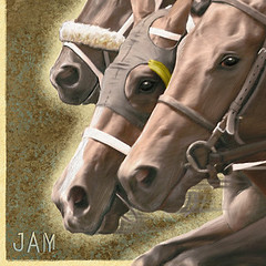 Breeders' Cup 2007 program cover detail