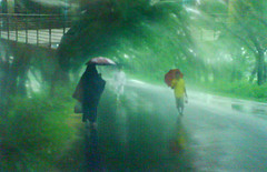 Rain (jacky04101) Tags: ảnh hồ vân