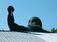 King Kong 4384 (Great Laker) Tags: signs sign statues signage monkeys roadsideamerica roadsideattractions gorillas roadsidearchitecture monkeystatues