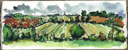 jerseyfarmfield