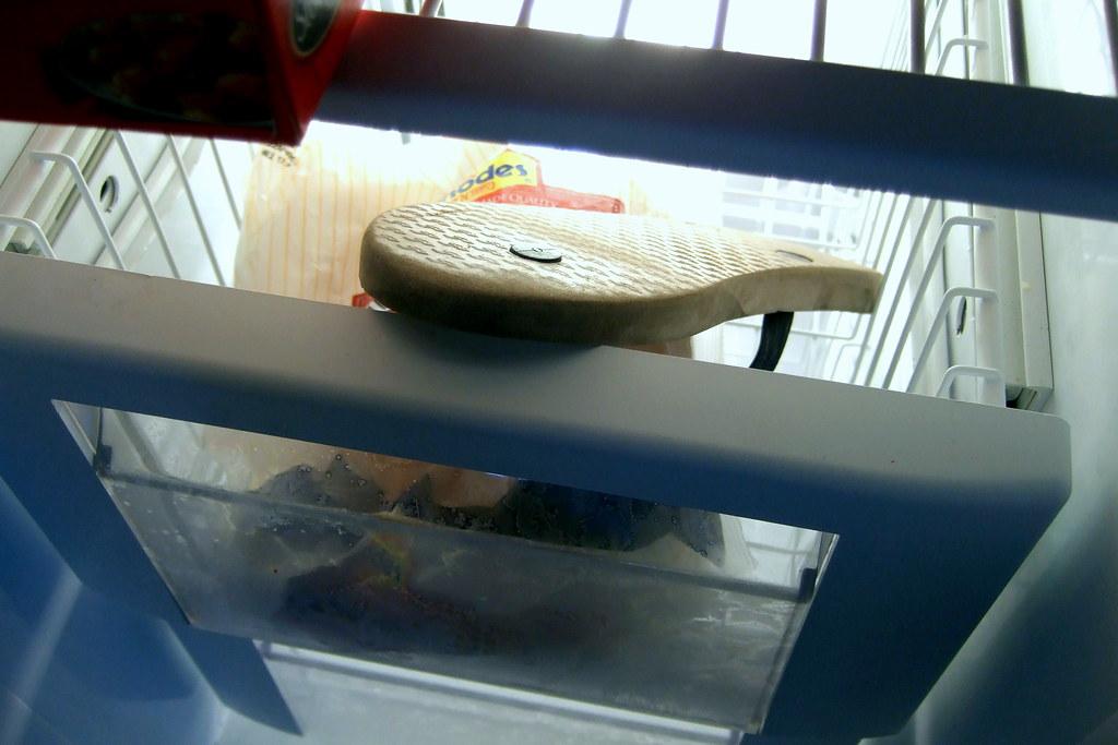 flip flop in the freezer