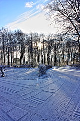 Finally snow here in the north of Denmark (tine krogh) Tags: schnee winter snow cold vinter gimp kalt hdr tine aalborg sne krogh koldt anawesomeshot impressedbeauty qtpfsgui canoneos450d top20white rubyphotographer flickrclassique digetalslr