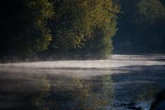 IMG_9132 (lepista) Tags: morning mist canal runcorn 20101024