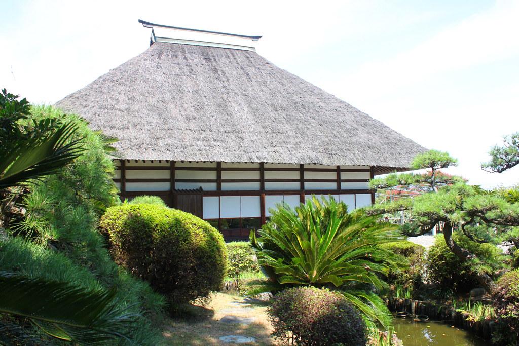 Shizuoka Guide (16)