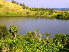Mwiine Derrick's collections on Uganda (Derrick42) Tags: beauty its with natural collection uganda breathtaking equatorial sceneries mwiine derricks